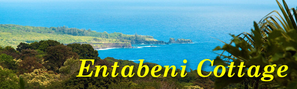 Entabeni Cottage Vacation Rental of Maui Hawaii